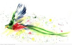 Crystal says: beautiful, but would it fit? watercolor quetzal - Google Search