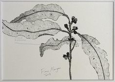WhereFishSing.com Fiona Morgan, pen drawing 'Meditative Study' #WhereFishSing GUMLEAVES Matted Nature illustration ORIGINAL Botanical Drawing, Black & White, Australian art, pen & ink, zen, mindfulness