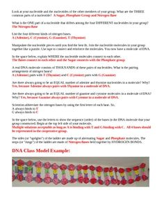 Dna The Secret Of Life Worksheet Answers
