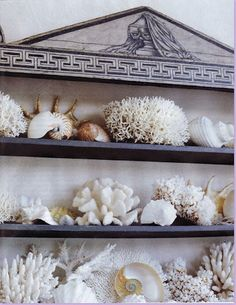 Coral on a chic outdoor English Regency shelf unit - Bunny Williams Dominican Republic home Coastal Style, Coastal Decor, West Elm, Marine Style, Fantasy Island, Shell Art, Coastal Homes, Coastal Cottage, Beach Cottages