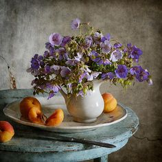 #still #life #photography • Still life with bouquet of meadow blue flowers in small white vase and fresh apricots on blue rustic table in countryside in midsummer
