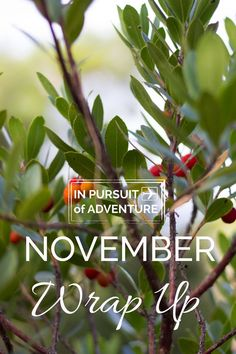 November Wrap Up - In Pursuit of Adventure
