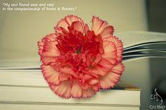Carti si flori – Cris Mary