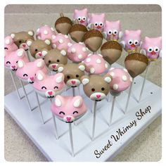 25 Assorted Cute Woodland Cake Pops for Forest by SweetWhimsyShop