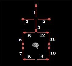 Neurociências em benefício da Educação!: enigmas
