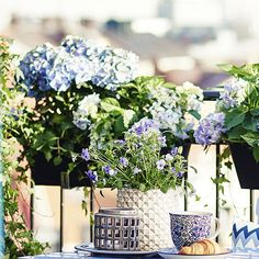 Krusning Ikea, Oas, Sweet Home, Table Decorations, Interior, Flowers, Balcony Gardening, Inspiration, Furniture