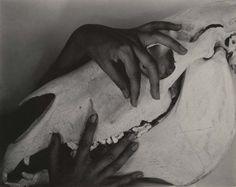 Georgia O'Keefe's Hands, photo by Alfred Stieglitz, 1930's