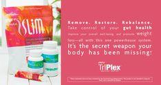 The Tripex by Plexus. This includes Probio5, Slim and Biocleanse. www,shopmyplexus.com/LisaJSchuster