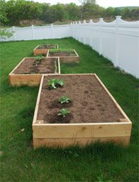 Advantages for a raised garden, including full directions on building your own.