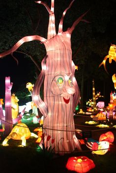 China Light Festival  - Taringa