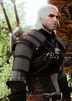 I don't make troubles, I make them go away. I'm a witcher.