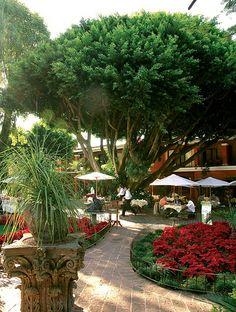 Las Quintas Hotel and Restaurant, Cuernavaca, Mexico