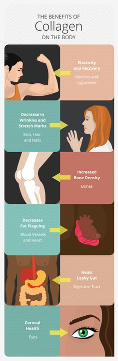 Benefits of Collagen on the Body - Six Reasons You Should Be Taking Collagen Daily