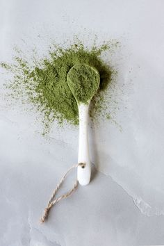 What is moringa and how can you use it? We'll tell you all about this antioxidant-packed superfood and share some of our favorite recipes to put it to use. Moringa Recipes, Superfood Recipes, Natural Health Remedies, Herbal Remedies, Superfoods, What Is Moringa, Moringa Powder, Best Detox, Detox Tips