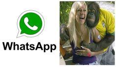 मजेदार और अंतिम विफल | पशु नवीनतम Whatsapp मजेदार वीडियो संकलन Funny Whatsapp Videos, Latest Video, Viral Videos, Music, Youtube, Musica, Musik, Muziek, Music Activities