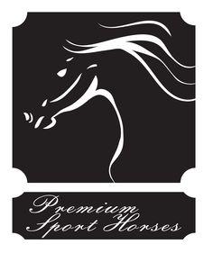 Premium Sport Horses by chiliG Horses, Black And White, Sport, Logos, Artwork, Black White, Deporte, Blanco Y Negro, Work Of Art