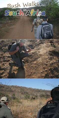 Enjoy the thrill of tracking wild game on foot with a bush walk to Pilanesberg or Kruger Park. With experienced armed rangers, get up close and personal with nature as we did hundreds of years ago. Ranger, South Africa, Safari, How To Memorize Things, Walking, Adventure, Game, Nature, Jogging