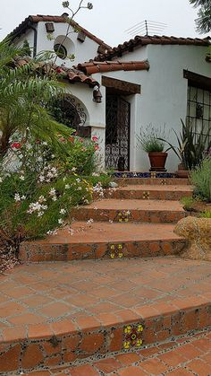 Saltillo Tile combined with decorative ceramic tiles | Avente Tile