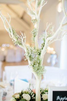 Tree Branch Baby Breath Gyp Gypsophila Centrepiece Table Decor Chic Hollywood Glamour Wedding http://www.kategrayphotography.com/