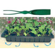 Sadbovač Herrison na priesady, cm, s lopatkou/pinzetou Herbs, Gardening, Plants, Food, Lawn And Garden, Essen, Herb, Meals, Plant