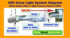 MH/HPS Grow Light Exhaust System Diagram (with carbon scrubber to get rid of smells). Source: http://growweedeasy.com/hps-grow-lights-setup