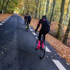 autuum bike ride #velo #bicycle #cycle-culture