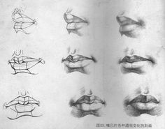 "Подборка ""Рот"" Drawing Heads, Human Drawing, Basic Drawing, Figure Drawing, Painting & Drawing, Anatomy Sketches, Anatomy Drawing, Anatomy Art, Pencil Art Drawings"