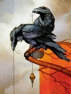 Ravens bring things to people. We're like that. It's our nature. We don't like it.                                                                             Peter S. Beagle