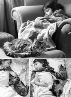 Thula the Maine Coon Cat, the Best Therapy for Iris, the Little Girl with Autism (XIII) l #friendship #cat