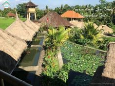 Where to Eat in Campuhan, Ubud, Bali