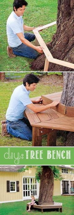 DIY: Tree Bench.
