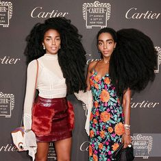 Twin Sisters Embrace Their Natural Afro Hair and Take the Beauty World by Storm Natural Afro Hairstyles, Bandana Hairstyles, Natural Hair Growth Tips, Natural Hair Styles, Quann Sisters, Cipriana Quann, Tk Wonder, Black Hair Magazine, Hair Shrinkage