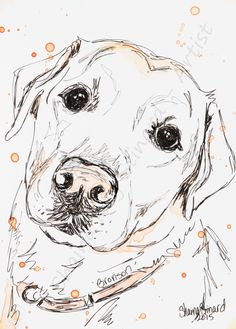 CUSTOM SKETCHES / PEN AND INK/ PET PORTRAITS / DOGS by Shaina Kay Stinard - Artist. Making your photos a work of art! www.shainastinardartist.com. Dog Pencil Drawing, Pencil Drawings Of Animals, Animal Sketches, Ink Pen Drawings, Dog Sketches, Rescue Dog Quotes, Tatoo Dog, Watercolor Pencil Art, Girl Cartoon Characters