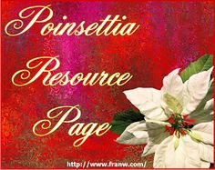 Funschooling & Recreational Learning: Poinsettia Resource Page