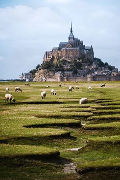 Mont Saint Michel, France Chateaus, Wanderlust, Memories, Island, My Favorite Things, Places, Instagram, Hamburg, Palaces