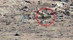 An 'alien coffin' might possibly be added to the long list of curious objects found on the surface of the Red Planet. Puzzled UFO enthusiasts now want NASA's Curiosity rover to take a closer look.
