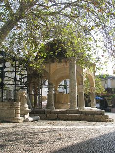 The Plane Tree of Hippocrates in Kos Town, on the island of Kos in Greece