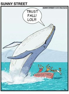 Whale Trust Fall