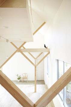 Open-Plan House Design with Y-shaped Wooden Frames Structure by Hiroyuki Shinozaki.