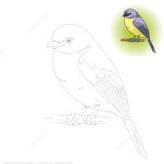 Draw a Yellow Robin by Tracing Dashed Line and Color Puzzle game Colouring Pages, Adult Coloring Pages, Coloring Books, Art Drawings For Kids, Bird Drawings, Free Printable Puzzles, Bird Template, Color Puzzle, Baby Quilt Patterns