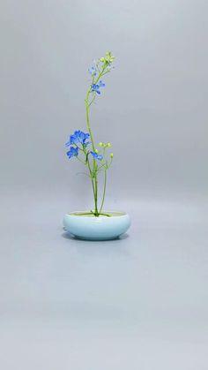 Unique Flower Arrangements, Ikebana Flower Arrangement, Ikebana Arrangements, Unique Flowers, Diy Flowers, Flower Decorations, Flower Bowl, Flower Art, Arreglos Ikebana