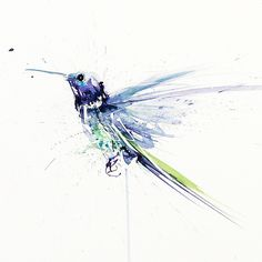 water color humming bird