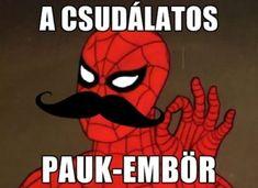 38 Emlékeztek még? :)   A legjobb Hungaro mémek! Funny Quotes, Funny Memes, Some Jokes, Movie Memes, Me Too Meme, Marvel Memes, Funny Pins, Funny Comics, Puns