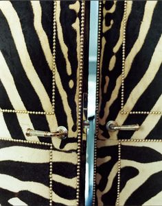 Zebra upholstered doors w/ nailhead trim; Miles Redd (only if I did a FAUX zebra finish) Interior And Exterior, Interior Design, Interior Doors, Elements Of Style, Closet Doors, Curtain Closet, Closet Redo, Wardrobe Doors, Master Closet
