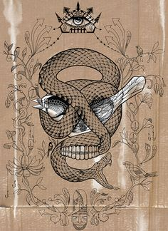 Skull by . ♦ F L F ♦ . #drawing #illustration #snake #bird #skull