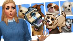 Sims 4 | 7 Puppy Challenge | 4 - Worlds most unskilled Photographer