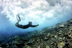 Diver near coral reef @treehugger
