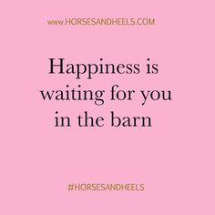 Horses make us happy.