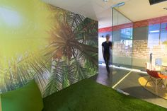 palm tree to spend some time under while working | Adallom Offices