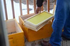 Beekeeping 101: Getting The Right Equipment Package Bees, Bee Boxes, Backyard Projects, Bees Knees, Bee Keeping, Board, Garden, Backyard Designs, Garten